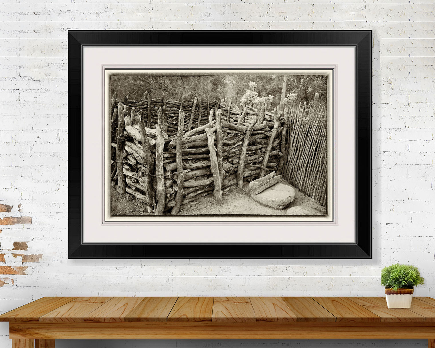 Livestock Corral with Cactus Fence